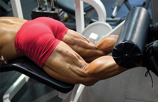 Great Exercises for Hamstrings